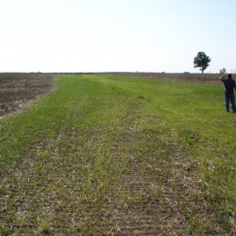 Grassed waterways are shaped channels to carry surface water across an agricultural field. They reduce soil erosion and protect water quality. This grassed waterway is was established in Vernon Township in 2012, and with proper maintenance it will benefit the farmer and natural resources for years to come.